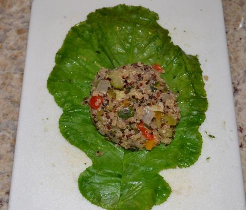 Quinoa on Leaf